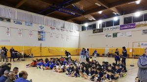 Circuito volley