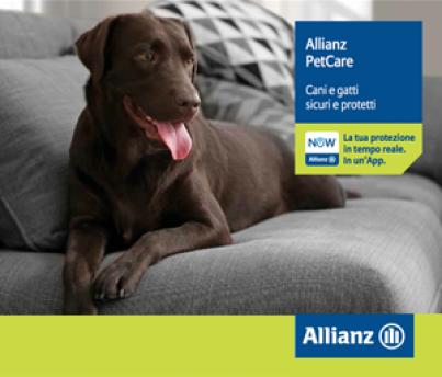 Allianz pet car articolo