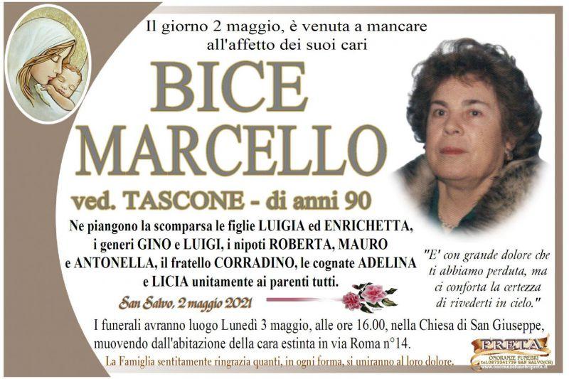 Bice Marcello 2/05/2021